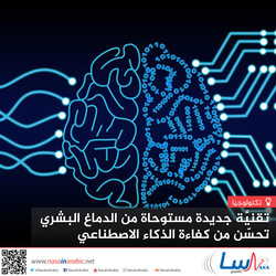 تقنية جديدة مستوحاة من الدماغ البشري تحسن من كفاءة الذكاء الاصطناعي