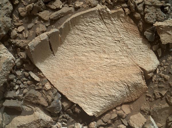 تظهر في هذه الصورة قطعة صخرٍ أطلق عليها اسم لاموس (Lamoose). التُقطت الصورة بواسطة كاميرا المُصور الذراعي المريخي (MAHLI) الموجودة على متن المركبة الفضائية مسبار كِريوسيتي (Curiosity). وكما هو الحال بالنسبة للصخور الأخرى القريبة الموجودة في جزءٍ من ممر مارياس في منطقة جبل شارب (Mt. Sharp) تحتوي هذه الصخرة على تراكيز عالية من مادة السيليكا (silica) بشكل غير طبيعي. وقد تم الكشف عن تراكيز السيليكا العالية أول مرة في هذه المنطقة بواسطة أداة الكيمياء والكاميرا ذات الإطلاق الليزري أو اختصاراً كيم كام (ChemCam). كما تم استهداف هذه الصخرة لكي تخضع لدراسة مُتابعة بواسطة كاميرا المُصور الذراعي المريخي ومطياف الجسيم ألفا بالأشعة السينية (Alpha Particle X-ray Spectrometer) أو اختصاراً (APXS)، والمثبت على ذراع على المسبار. حقوق الصورة: ناسا/مختبر الدفع النفاث – معهد كاليفورنيا للتكنولوجيا/ أنظمة مالين لعلوم الفضاء))