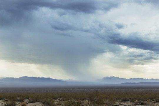 خزّنت القارات كمياتٍ متزايدة من الماء في العقد الماضي، مما سبّب في تباطؤ وتيرة ارتفاع مستوى سطح البحر.  في الصورة: الحديقة الوطنية في الولايات المتحدة.