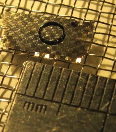 اختبر الباحثون قدرة الأجسام الطائرة ذات الألواح النانوية على حمل حمولات صغيرة. حقوق الصورة: Bargatin Group, Penn Engineering