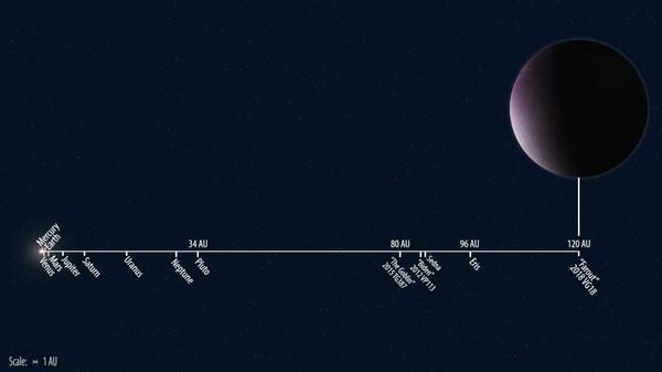 """موقع الكوكب القزم 2018 VG18 مقارنةً مع مدارات كواكب النظام الشمسي الأخرى. إنهُ يرقى بالفعل إلى لقب """"Farout"""" والذي يعني """"بعيد""""! حقوق الصورة: Roberto Molar Candanosa / Carnegie Institution for Science"""