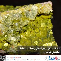نظائر لليورانيوم تحمل بصمات لنشاط بكتيري قديم