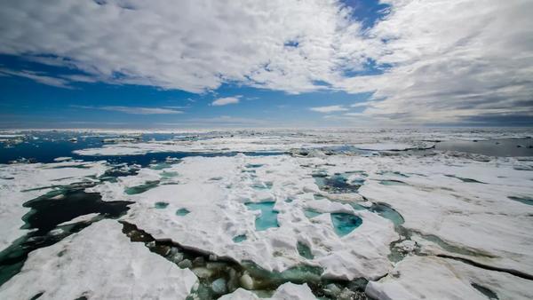 المحيط الخفي على حدود شبه جزيرة شوكشي عام 2016. حقوق الصورة: NOAA/Chukchi Borderlands