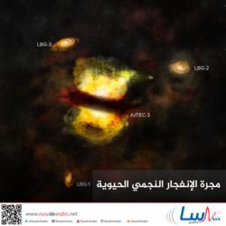 مجرة الإنفجار النجمي الحيوية