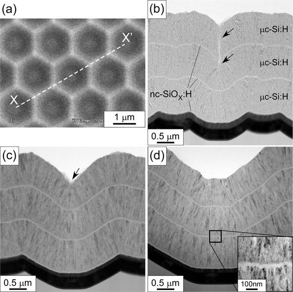 صور طوبولوجية لأفلام السيليكون على بنى قرص العسل، التي استخدمها الباحثون في تصميم الخلايا الشمسية الجديدة. Credit: Sai, et al. ©2015 AIP Publishing
