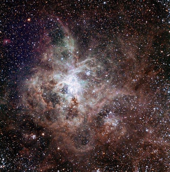 """أول صورة ضوئية لتلسكوب """"ترابيست"""" TRAPPIST، وتُظهر سديم الرتيلاء"""