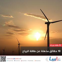 10 حقائق مذهلة عن طاقة الرياح