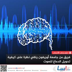 فريق من جامعة أوريغون يلقي نظرة على كيفية تحويل الدماغ للصوت