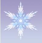 شكل 4: ندفة الثلج
