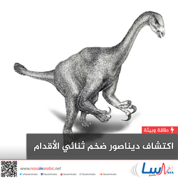 اكتشاف ديناصور ضخم ثنائي الأقدام