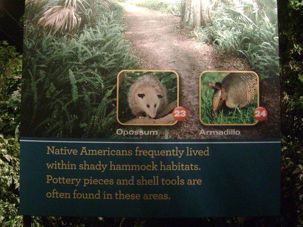 يظهر في الصورة الحيوان المدرع إلى اليمين وحيوان الأبوسوم (الفأر الجرابي) إلى اليسار، اللذان يعيشان في المناطق الخضراء من مركز كينيدي للفضاء