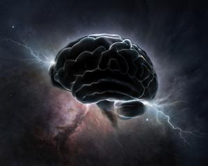 هل يُمكن تحميل الدماغ البشري إلى جهاز حاسوب؟