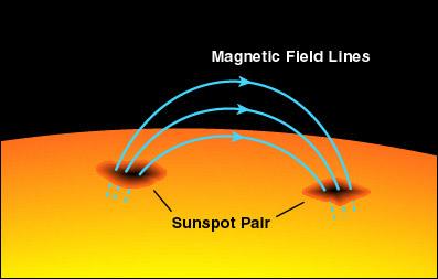 sunspot pair زوج البقع الشمسية، magnetic field lines خطوط المجال المغناطيسي.