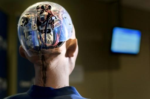 يأمل مطورو أنظمة الذكاء الاصطناعى أن تصل اختراعاتهم بعضَ القطاعات مثل الرعاية الصحية والتعليم، وبشكل خاص إلى المناطق الريفية التي تعاني من نقص أصحاب المهن.