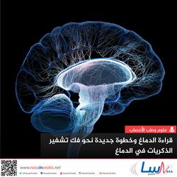 قراءة الدماغ وخطوة جديدة نحو فك تشفير الذكريات في الدماغ