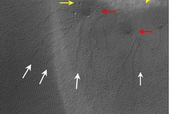 أخاديد متغضنة على الكثبان الرملية للمريخ (الأسهم البيضاء). وتشير الأسهم الصفراء إلى الصخور، كما تدل الأسهم الحمراء على الذرا الداكنة. حقوق الصورة: NASA/JPL/University of Arizon  المصدر: https://nasainarabic.net/main/articles/view/winters-on-mars-are-shaping-the-red-planet-landscape