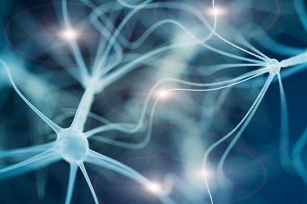 الجين SCN2A – والذي كان من أوائل الجينات المرتبطة باضطرابات طيف التوحد المكتشفة بخرائط جينومية لكامل الإكسونات- يشفر لقناة صوديوم بروتينية تدعى NaV2.1 وهي هامة جدًا بالنسبة لقدرة الخلية العصبية على التواصل الكهربائي، وبشكل خاص في المراحل المبكرة من تطور الدماغ. NeuroscienceNews.com image is adapted from the UCSF press release