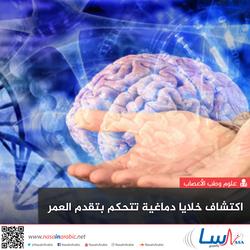 اكتشاف خلايا دماغية تتحكم بتقدم العمر
