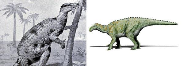 عمل فني من القرن 19 للإيجوانودون برنيصارتينسيس Iguanodon Bernissartensis، الذي سمي نسبة إلى منجم الفحم البلجيكي حيث اكتشفت عينة ضخمة لهذا العاشب. يعطي العمل الفني الديناصور مظهرًا شبيهًا بالتمساح مقارنةً بأعمال فنية أكثر حداثة (على اليمين). حقوق الصورة: JOSEPH SMIT/ WIKICOMONS ; NOBU TAMURA/ WIKICOMONS (CC BY-SA 3.0)