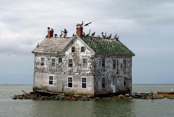 انهيار آخر منزل في جزيرة هولاند في خليج تشيسابيك Chesapeake Bay في ميريلاند بعد أشهرٍ قليلةٍ من تصويرِ هذه الصورة في العام 2010، وهو ضحيةٌ لعملية الارتداد ما بعد العصر الجليدي وارتفاع مستويات البحار في العالم. تم إنشاء هذه الجزيرة في القرن السابع عشر، لكنها الآن تحت الماء بشكل كامل عند ارتفاع المد. المصدر:حقوق الصورة لأحد أعضاء موقع فليكر baldeaglebluff / CC BY.