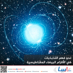نحو فهم التذبذبات في الأقزام البيضاء المغناطيسية