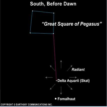 إن النقطة المُشعّة لوابل دلتا الدلويات تكون بالقرب من نجم سكات(Skat) ، أو دلتا أكواري (Aquarii) هذا النجم قريب من السماء إلى نجم أكثر إشراقاً يُدعّى فومالوت (Fomalhaut) والذي يمكن العثور عليه تقريباً على خط مرسوم جنوباً من خلال النجومعلى الجانب الغربي من مربع النجوم بيغاسوس (Great Square of pegasus).