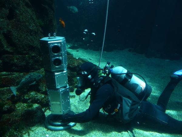 يختبر الباحثون أنظمة مِسبار تحت الجليد في قاع معرض مائي كبير في مركز كاليفورنيا للعلوم. الباحث الرئيسي آندي كليش هو أيضاً غواص متطوع في مركز العلوم. المصدر: NASA/JPL-Caltech.