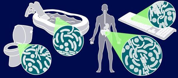 تأمل العديد من التحريات والدراسات مثل RR-7 في محطة الفضاء الدولية إلى الوصول لفهم أفضل عن تأثير السفر الفضائي على الميكروبات أو الكائنات الحية الدقيقة كالبكتيريا التي تعيش على أو في أجسامنا. لأن هناك علاقة مباشرة بين صحة الإنسان والميكروبات، فإن ذلك سيكون مهماً لمستقبل المهمات الفضائية. حقوق الصورة: NASA