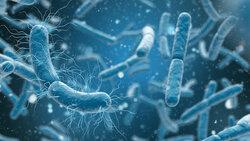 صنفٌ جديدٌ من المضادّات الحيويّة فعّالٌ ضدّ طيفٍ واسعٍ من البكتيريا!