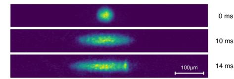 صور تجريبية بكاميرا TOF لتمدد أحادي البعد لتكاثف بوز-إينشتاين ذي المدار المضاعف