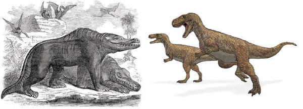 تصوير يعود إلى سنة 1859 لـ ميجالوصوروس باكلاندي Megalosaurus Bucklandii (على اليسار)، يبيّن أحد الديناصورات الثلاثة التي صُنّفت كديناصورات. أدت اكتشافات أحفورية لاحقة للميجالوصوروس وثنائيات الأرجل الضخمة الأخرى إلى إعادة تصنيفات أحدث (على اليمين). حقوق الصورة: SAMUEL GRISWOLD GOODRICH/WIKICOMONS LADYOFHATS/WIKICOMONS