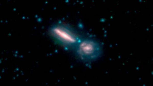 تُعرف المجرات المندمجة هذه باسم Arp 302، وكذلك VV 340. يمثل اللونان الأزرق والأخضر أطوال موجية تنبعث بقوة من النجوم، بينما يشير الأحمر إلى أطوال موجية تنبعث غالبًا من الغبار. حقوق الصورة: NASA/JPL-Caltech.