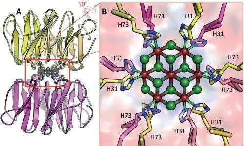 هيكل بلورة كلوريد الكادميوم النانوية