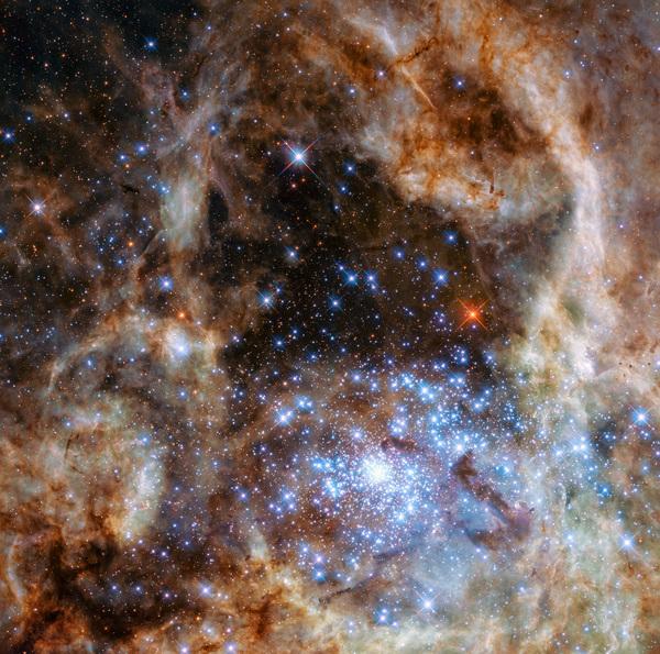 تظهر صورة هابل المنطقة المركزية من سديم العنكبوت Tarantula Nebula في سحابة ماجلان الكبرى. يمكن رؤية العنقود النجمي R136 في أسفل يمين الصورة. يحتوي هذا العنقود على مئات النجوم الزرقاء الشابة، من ضمنها أضخم نجم تم اكتشافه في الكون حتى الآن.