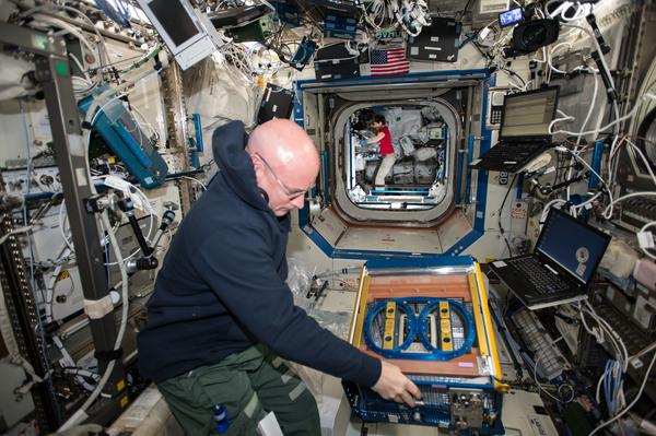 رائد الفضاء التابع لناسا سكوت كيلي Scott Kelly يتعامل مع أداة بحث رودينت Rodent على متن محطّة الفضاء الدوليّة. (ناسا).