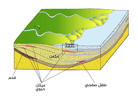 الشكل 3: أولى مراحل طمر الطبقات الرسوبية في الحوض.
