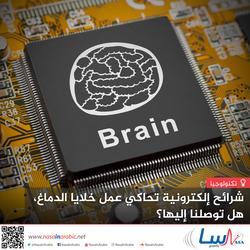 شرائح إلكترونية تحاكي عمل خلايا الدماغ، هل توصلنا إليها؟
