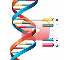 هل الجينات أنانية حقاً؟