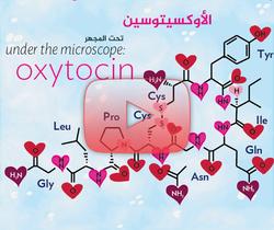 علم الأعصاب خلال دقيقتين: الأوكسيتوسين