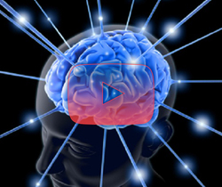 علوم الأعصاب خلال دقيقتين: الدوبامين