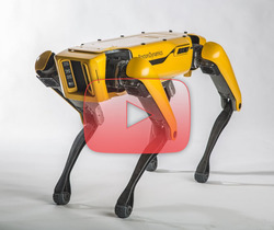 روبوتات Boston Dynamics المدهشة!