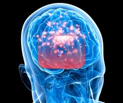 علوم الأعصاب خلال دقيقتين: الصرع